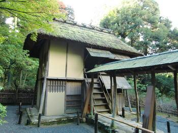 高台寺 時雨亭1.JPG
